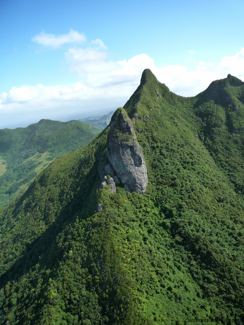 A forest covered mountain in mauritius