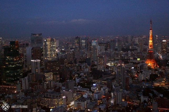 The best view on Tokyo from the Mori Towers in Ropongi Hills