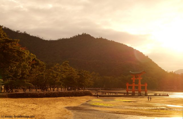 red torii of the Itsukushima shrine in miyajima in the sun