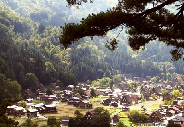 A view from above on the village of Shirakawa-go in Japan - on of the best things to do in Japan