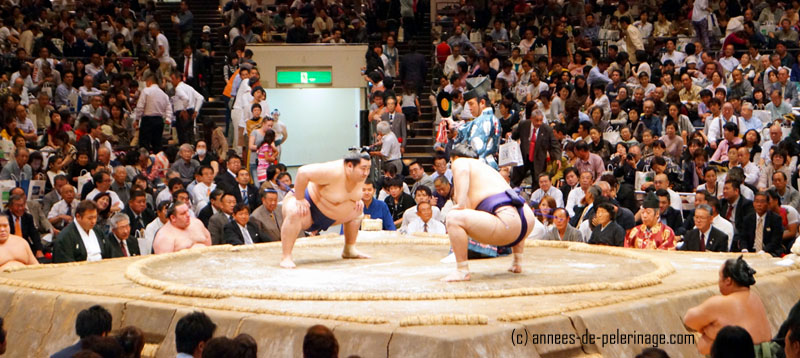 Sumo wrestling in Tokyo: two wrestlers taking each others measure before the short bout