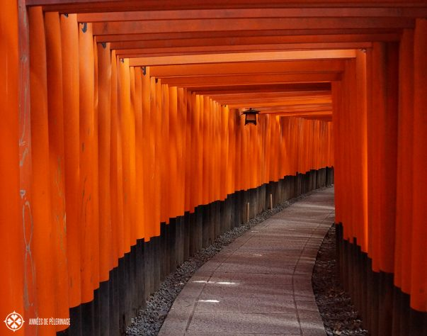 The red torii gates of the Fushimi Inarai Taisha Shrine in Kyoto