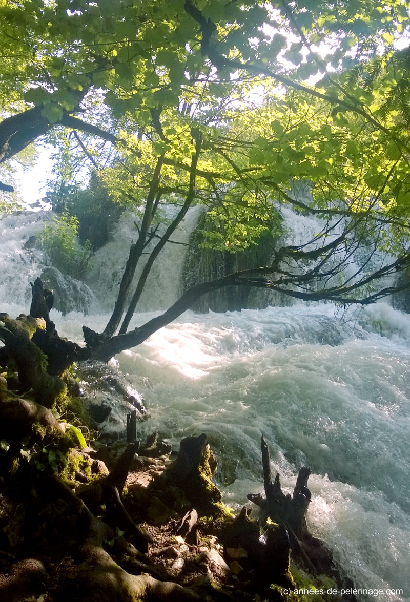 Foaming Rapids at Plitvice Lakes National Park Croatia