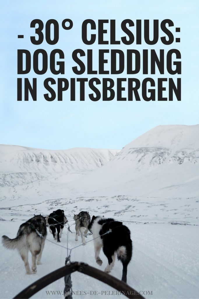 Dog sledding at minus 30 degrees celsius in Spitsbergen, svalbard. An amazing travel experienc to add to your bucket list