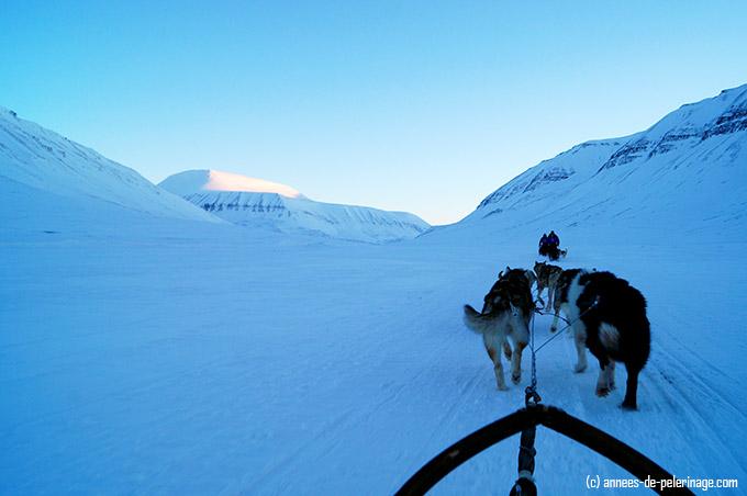 Dog sledding in a remote valley in spitsbergen in winter