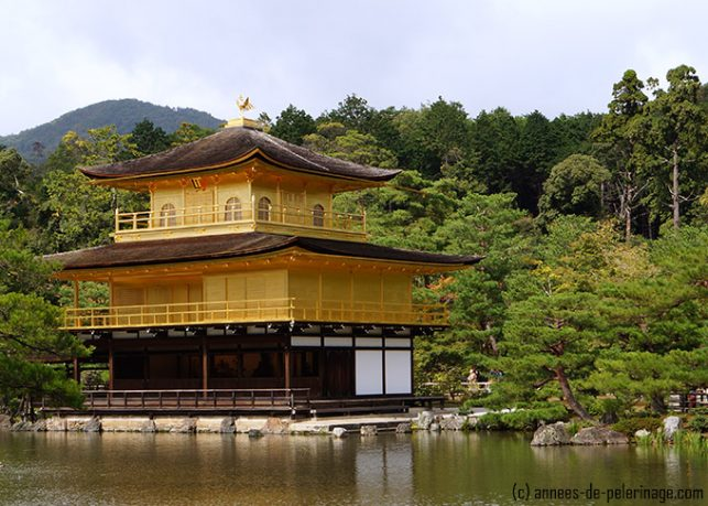 a close up of the golden pavilion of kinkaku-ji in kyoto