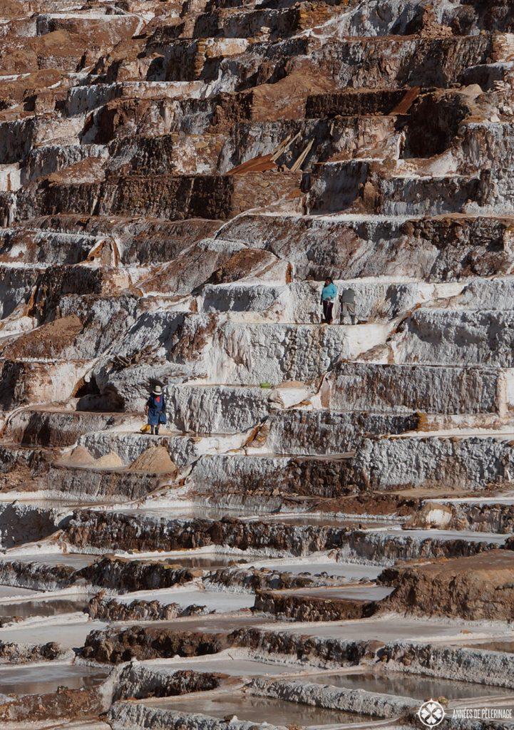 The Maras salt ponds peru and a worker working in the fields