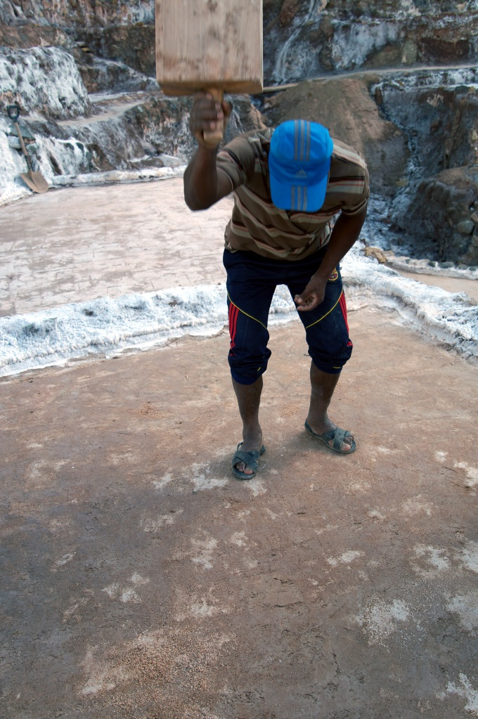 A worker slaming down a huge wooden baton on the floor of the maras salt ponds