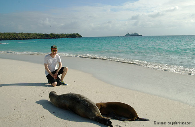 Me sitting on the beach in galapagps with sealions in front of me and the celebrity xpedition cruise ship in the background