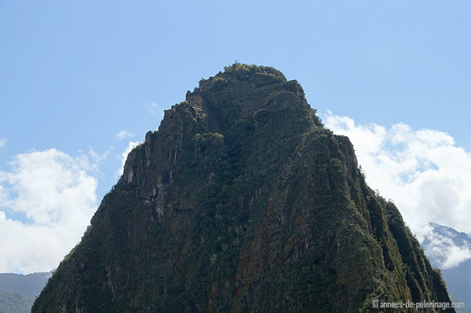 The peak of Wayna Picchu from close up with the inca ruins at top
