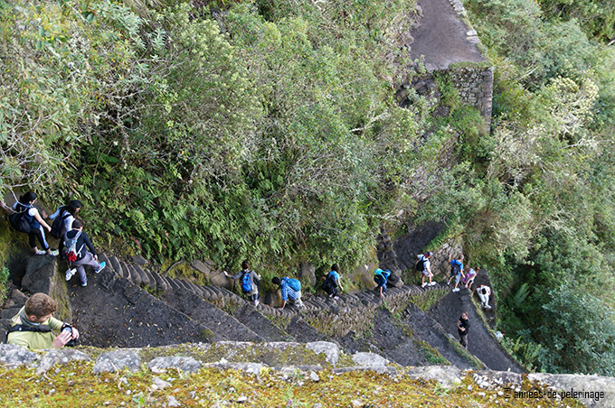 A group of people walking down the stais of death from wayna picchu