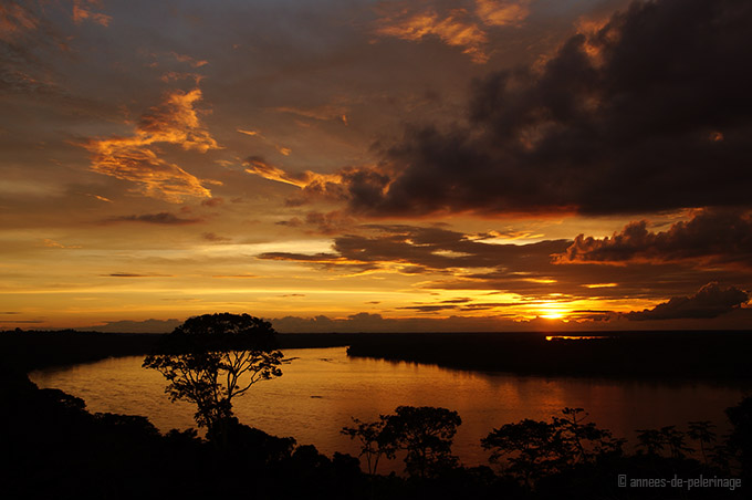 Sunset over the upper amazin river in ecuador, yasuni national park