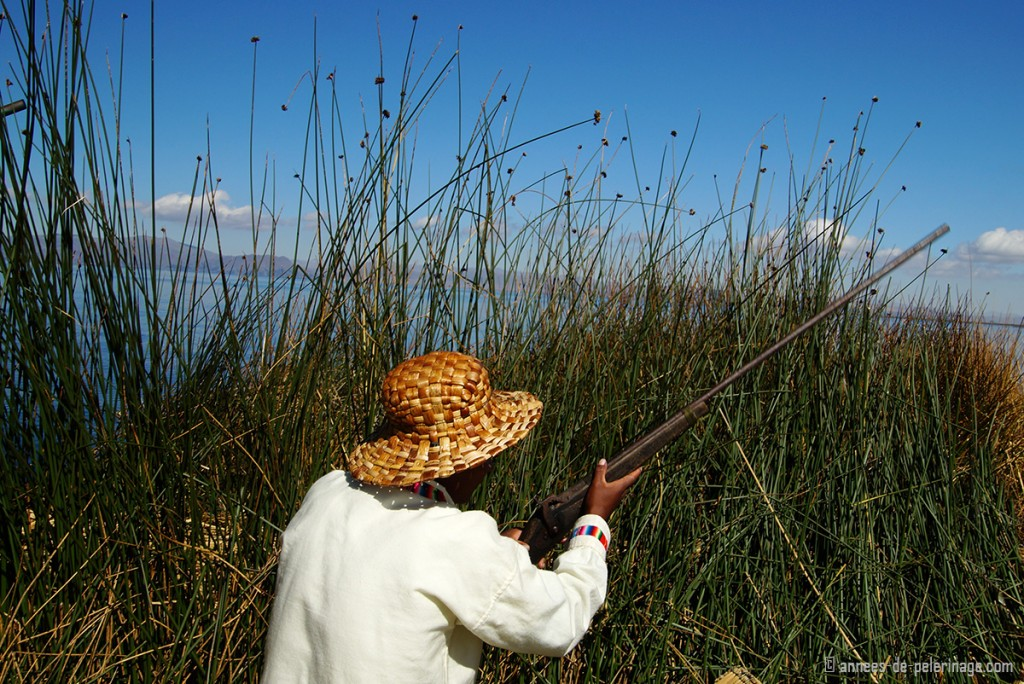Hunting with the Uros people in the marshlands of Lake Titicaca, peru