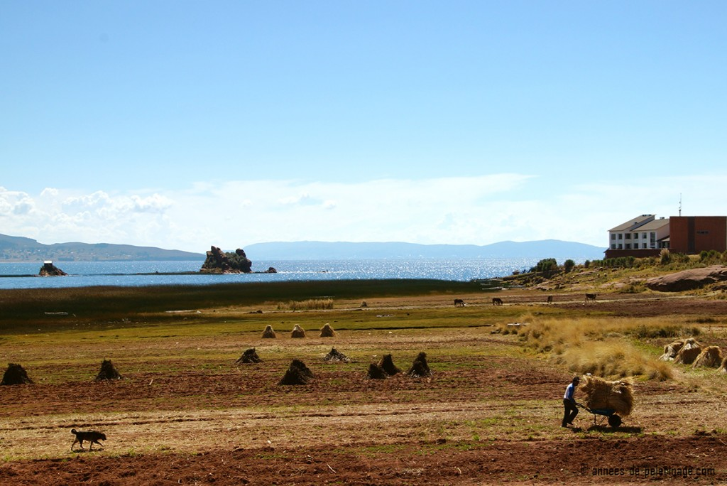 Titilaka lodge as seen from the peninsula with sweeping fields in front of it and Lake Titicaca glittering away in the background