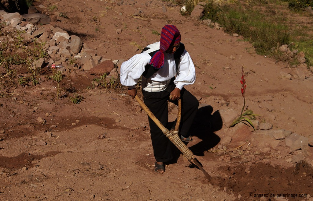 A man plowing a field with an archaic handheld plow wearing traditional clothings, taquile island lake titicaca peru