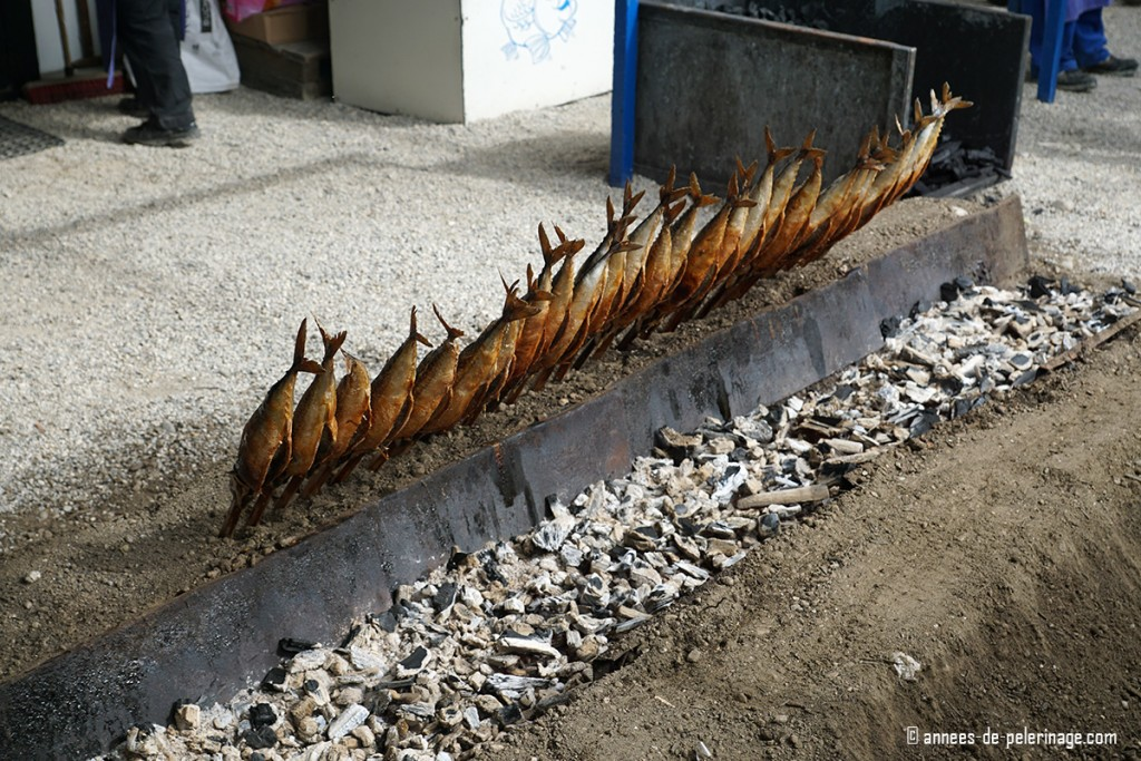 The grilled fish called steckerlfish roasting a way on an open coal fire at oktoberfest in munich