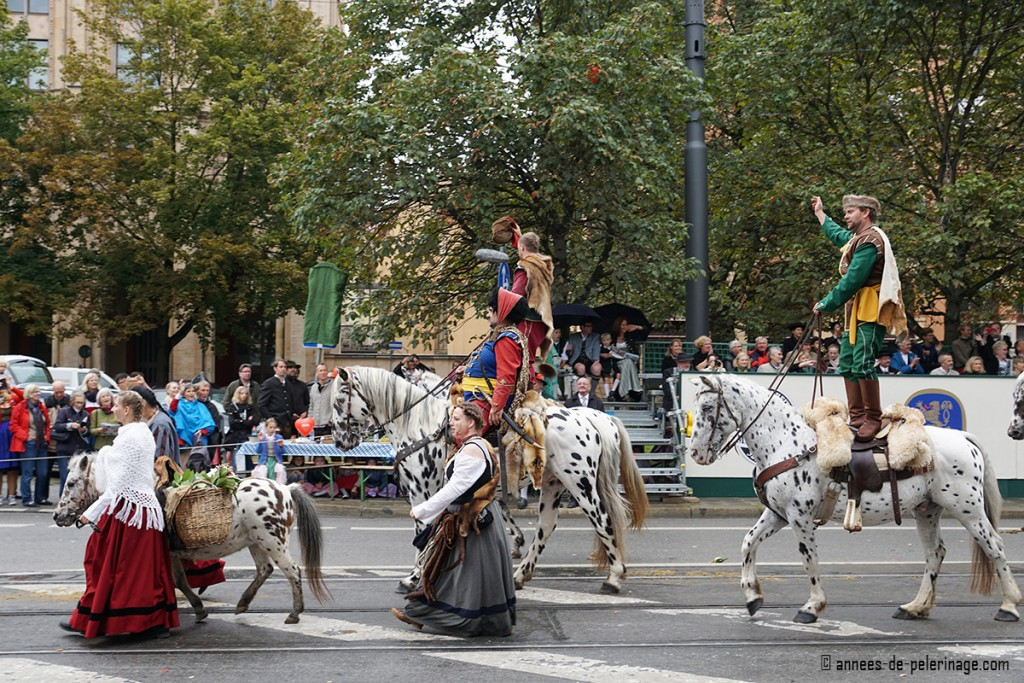 Medival acrobats standing on spotted horses for the costume parade at oktoberfest