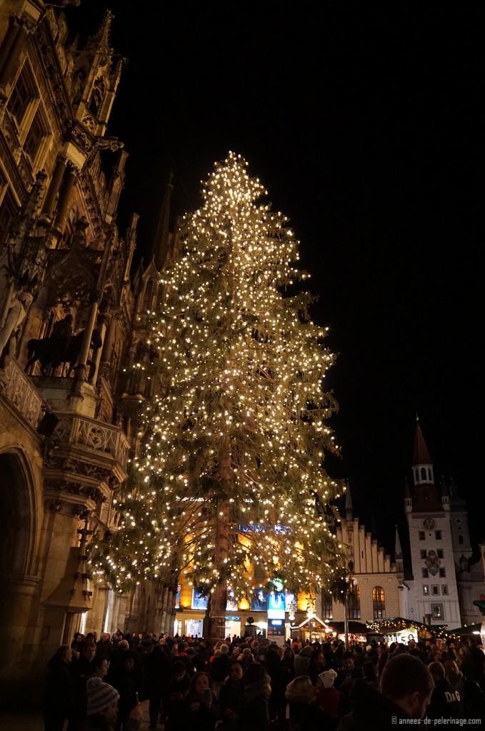 christmas tree christmas market munich