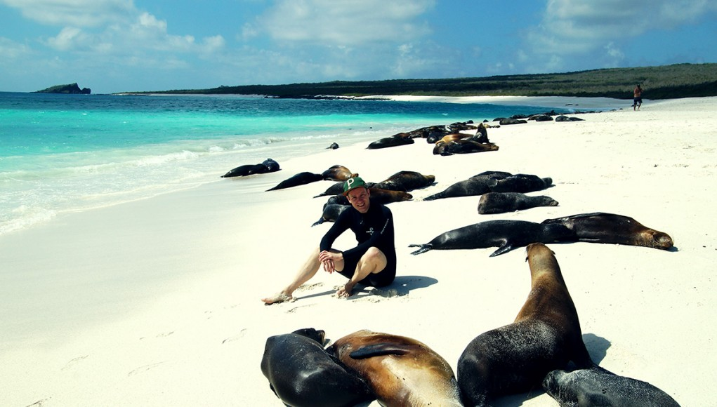 Me sitting between a group of sea lions on the Galapagos islands