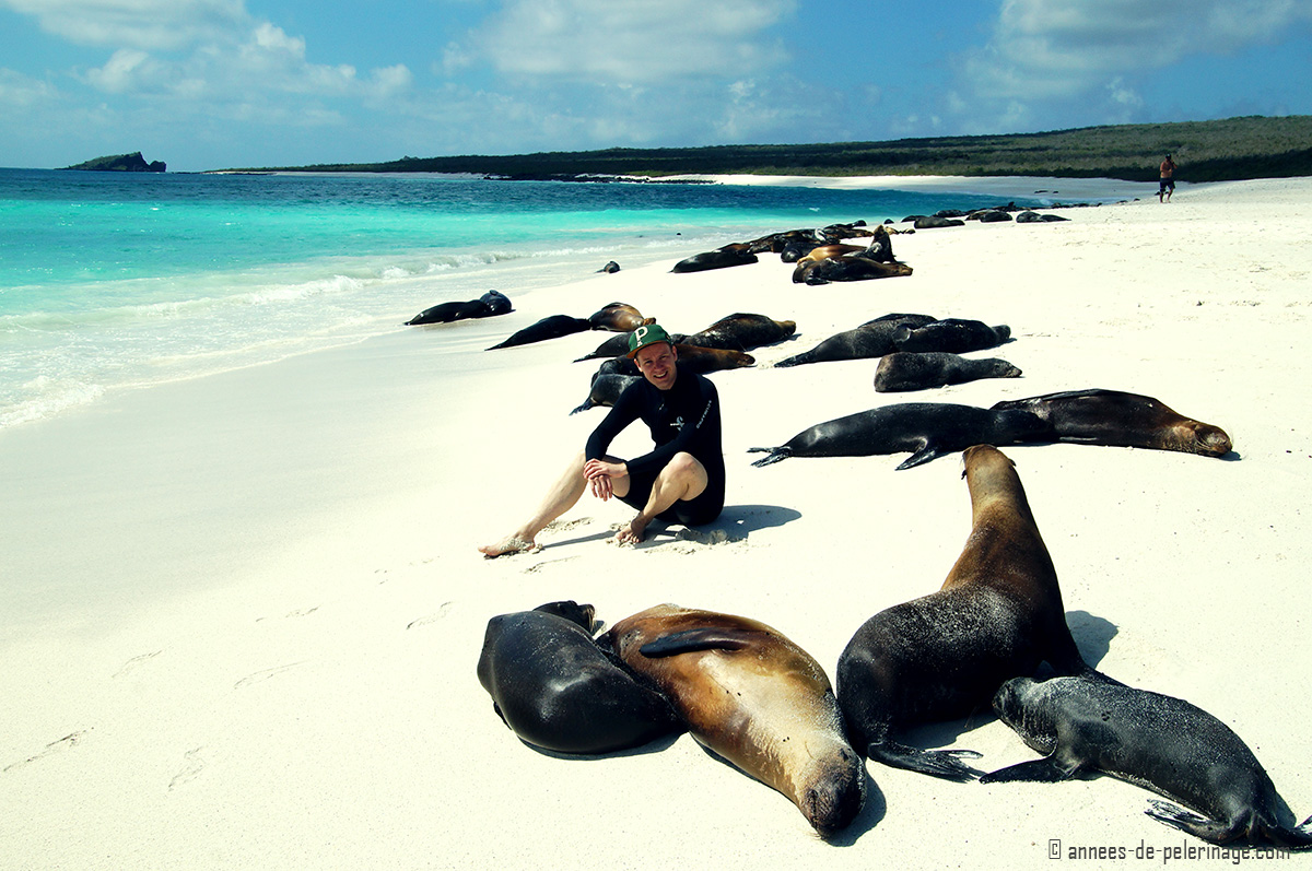 how to fly from quito to galapagos