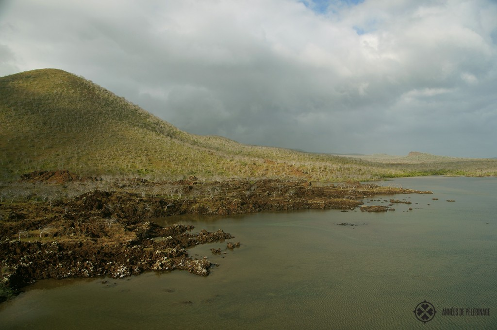 The very barren landscape of the Galápagos Islands is nonetheless extremly stuning.