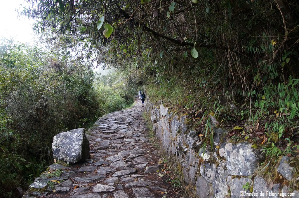 The path leading to the Intipunku (Gate of the Sun) in Machu Picchu