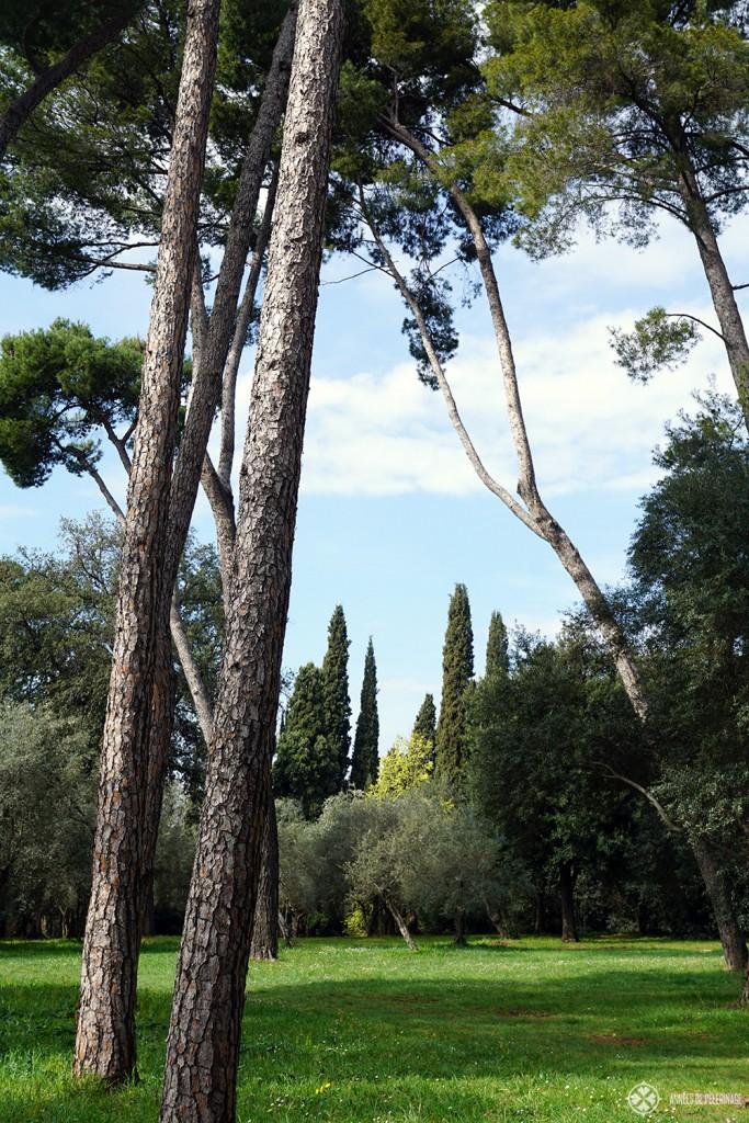 The enchanting park of the ancient Villa Adriana in Tivoli, Rome