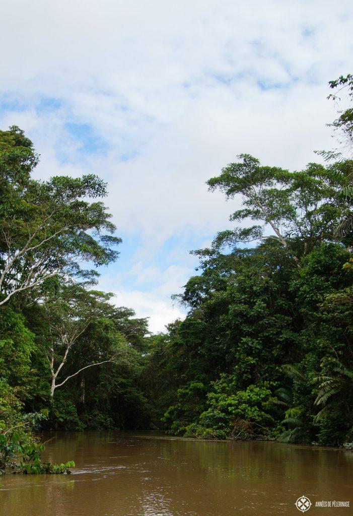 The Pañacocha Lagoon in Ecuador - a little backwater of the Rio Negro
