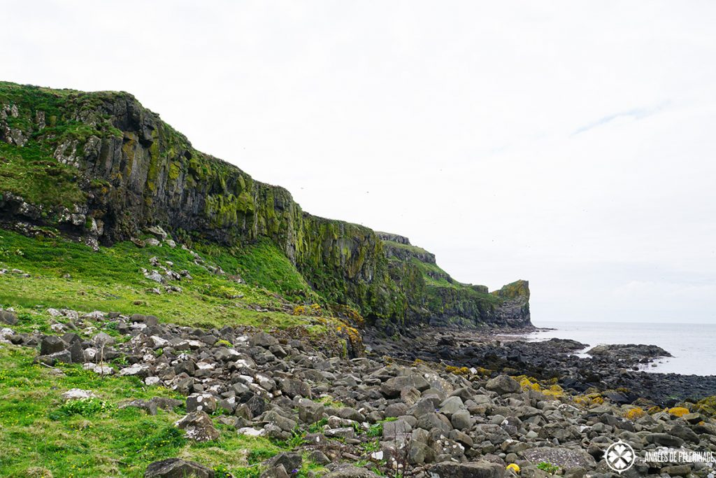 Lunga Treshnish Islands Scotland