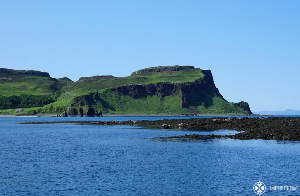 A low tidal bank with a colony of seals near the Isle of Skye in Scotland. Put it on your list of things to do!