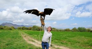 Me hunting with eagles in Kyrgyzstan