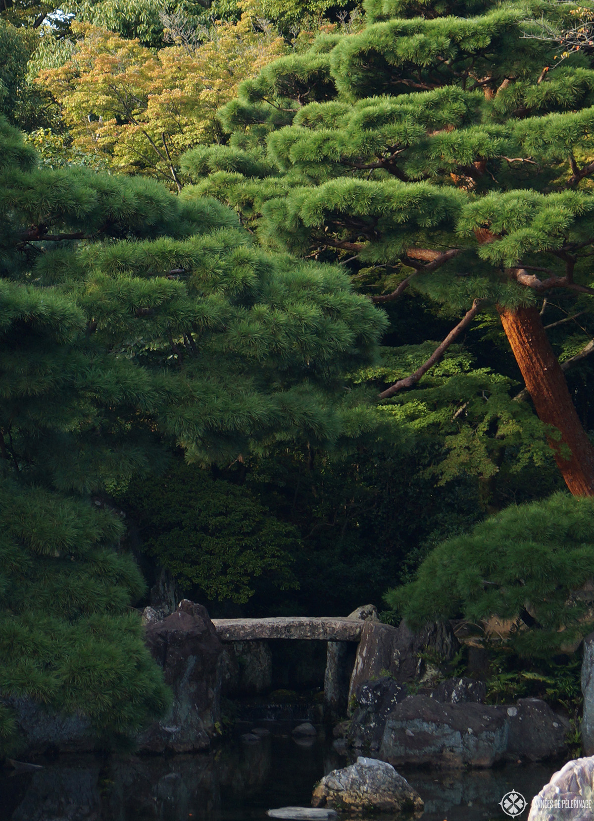 The gardens of the imperial vKatsura villa in kyoto