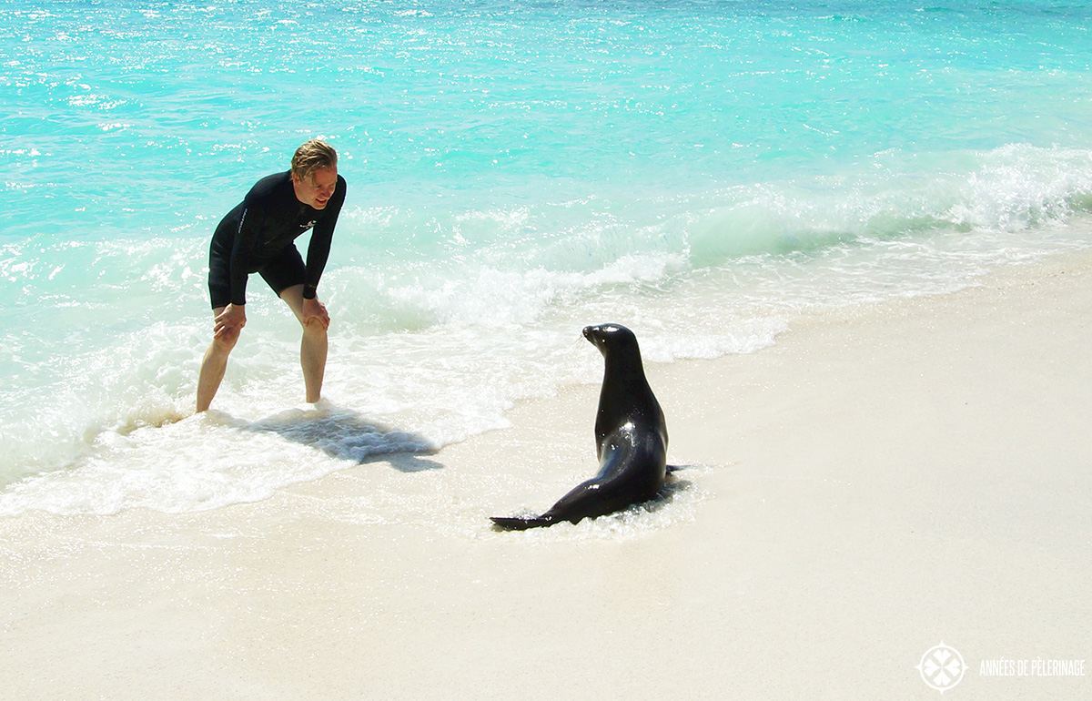 me playing with a young sea lion while traveling around the galapagos islands