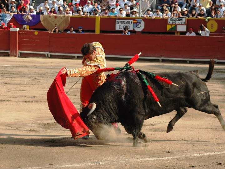 A bullfight at Plaza de acho Bullring in Lima Peru