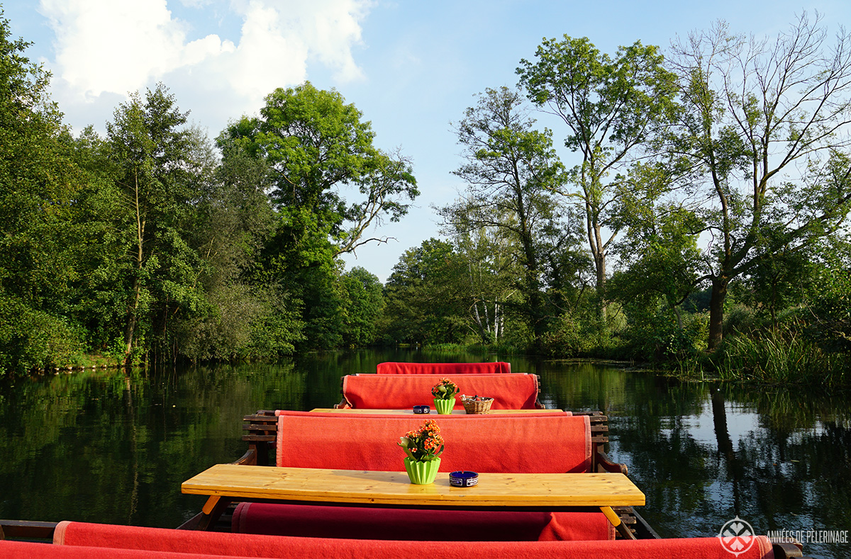 A private boat tour in the Spreewald forest in Germany