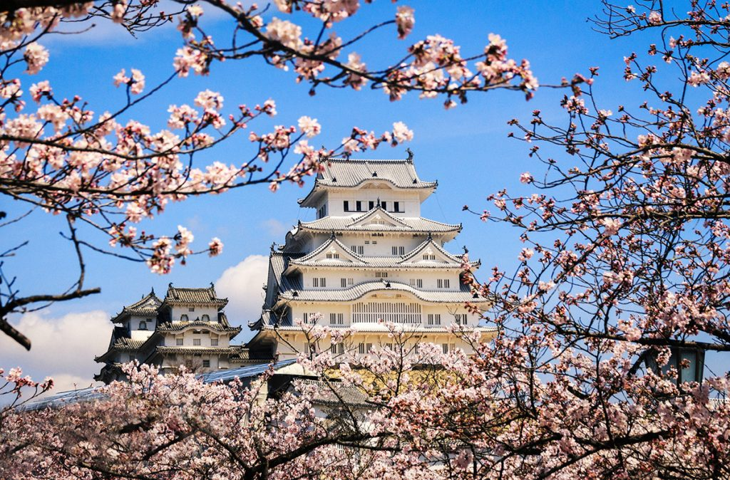 Himeji Castle, or White Heron Castle, in Japan during cherry blossom | pic: Reginald Pentinio
