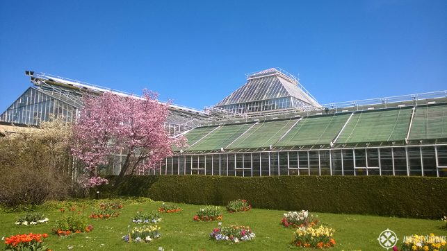 The botanical garden - one of the many must-sees in Munich and a true insider tip
