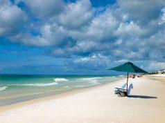 The beach in Grayton Beach State Park, Florida
