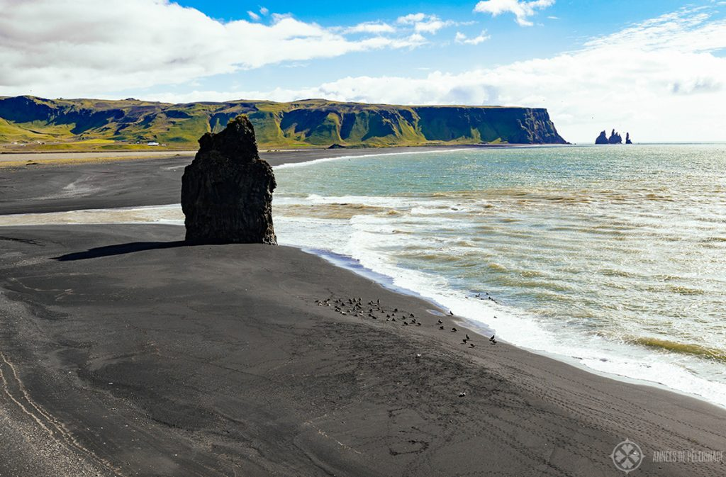 The black sand beach in Reynisfjara near Vik in Iceland
