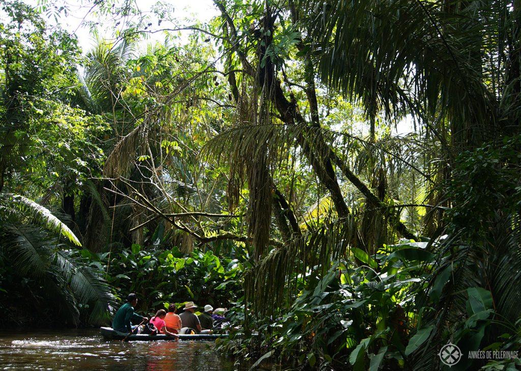 A canoe tour through the Yasuni National Park in Ecuador