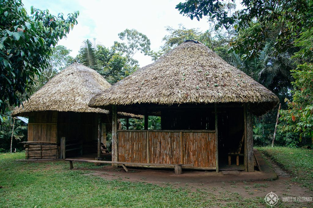 A traditional hut of the indigenous people in the amazon rainforest in Ecuador