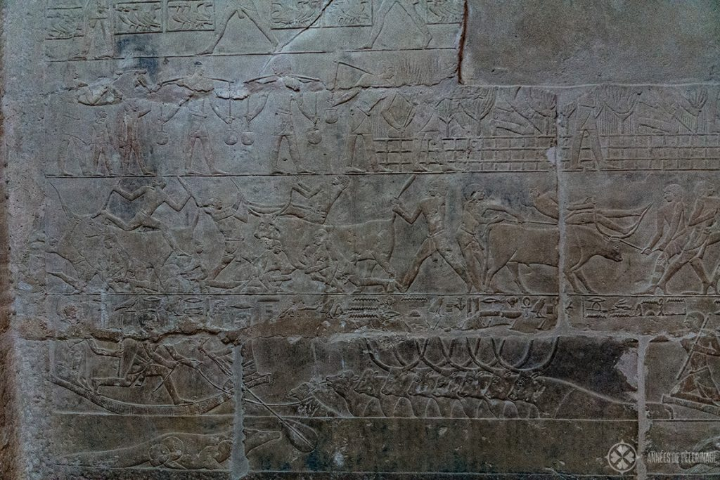 mural depicting a hunting scene inside the tomb of mereruka, saqqara