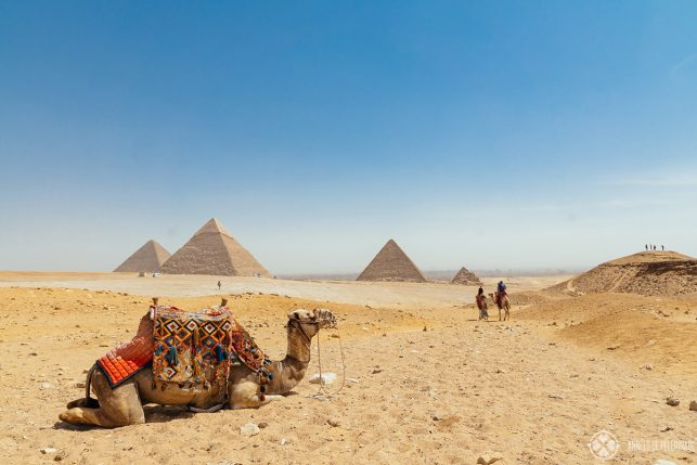 Camel riders on their way to the classic Panorama of the Pyramids of Giza near Cairo, Egypt