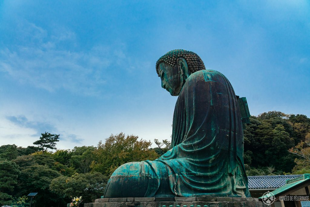 Profile of the Kamakura buddha (daibutsu) at Kotoku-in temple in Japan