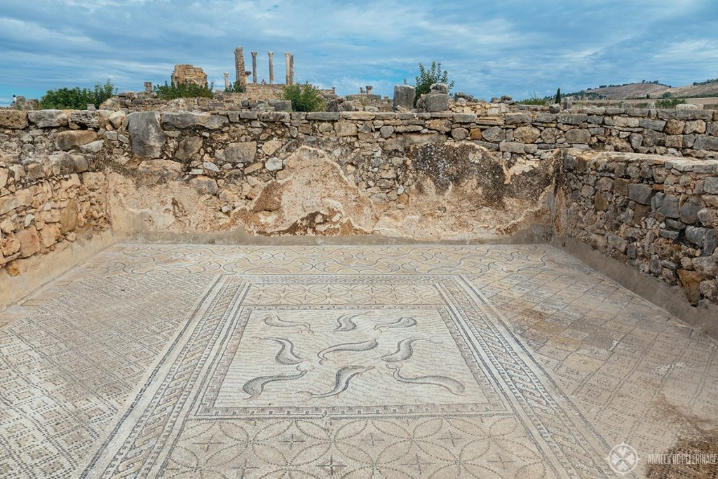 A dolphin mosaic inside one of the many villas of Volubilis near Meknes, Morocco