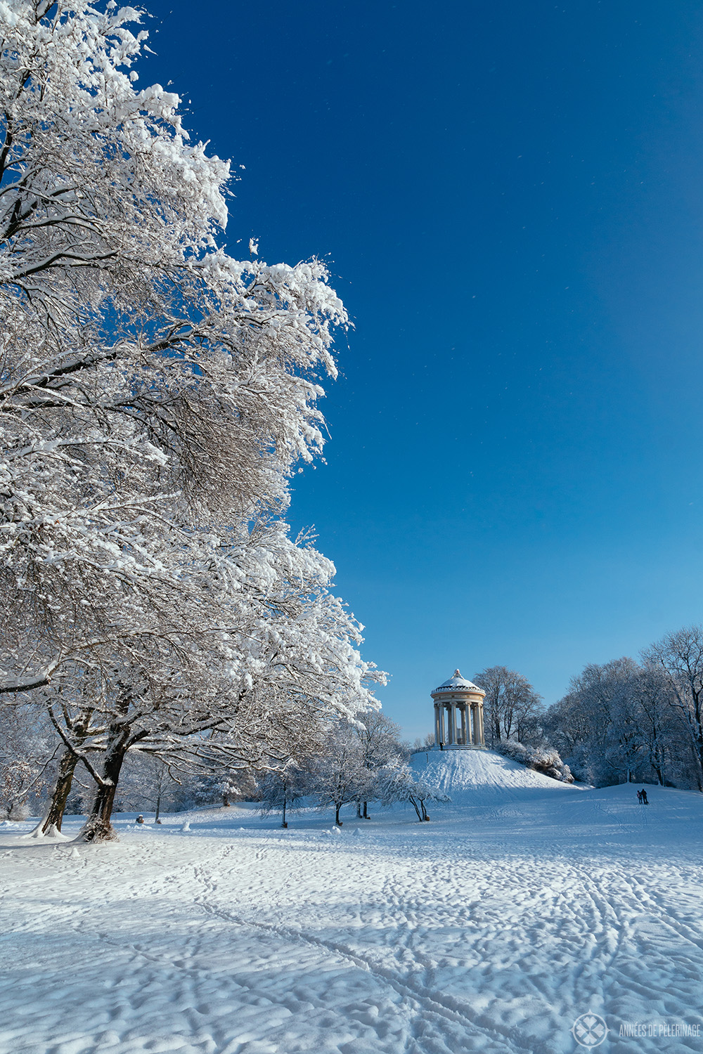 View of the Monopteros in the Englische Garten in winter