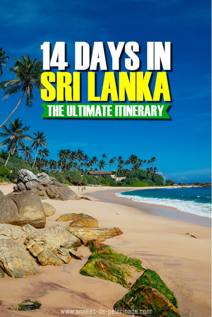 The ultimate 14 days Sri Lanka itinerary. This detailed Sri Lanka travel guide will show you everything you can see in two weeks and how to organize your trip. What to see, when to visit and where to stay - click or more information on Colombo, Sirgiriya, Dambulla, Kandy, Galle and Yalla National park. #travel #srilanka #traveltips #travelguide #asia #wanderlust #explore #bucketlist