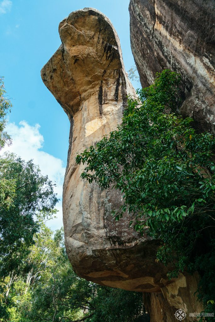 The majestic Cobra Rock as part of the boulder garden below Sigirya, Sri Lanka