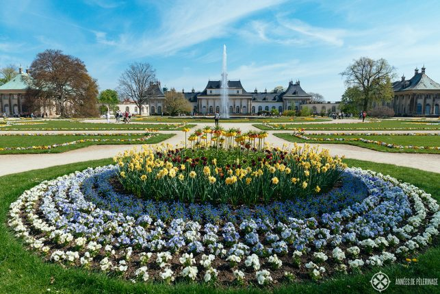 Full view of Pillnitz Castle in Spring