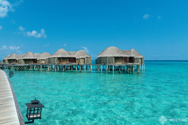 A row of overwater bungalows - My Constance Halavveli review actually recommends you to get a beach villa